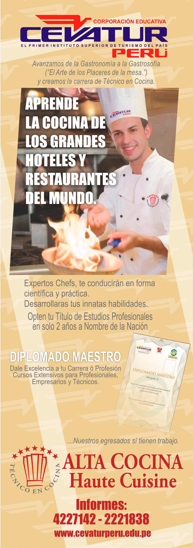 Tecnico en cocina cevatur - Tecnico en cocina y gastronomia ...