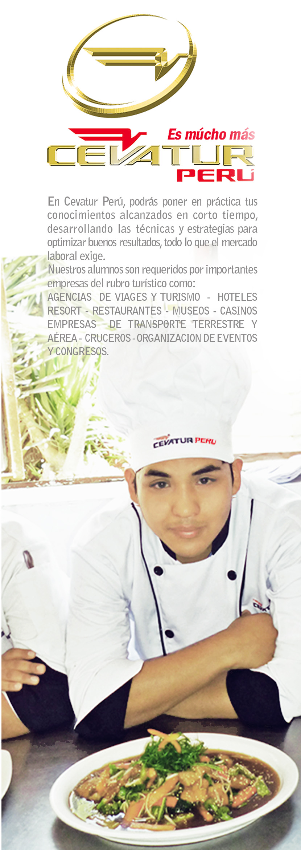 T cnico en cocina cevatur - Tecnico en cocina y gastronomia ...