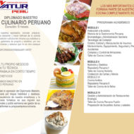arte culinario peruano 2